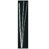 Filete de hueso natural de 1 mm. de espesor. - Filete de hueso natural de 1 mm. espesor (Precio por metro lineal)