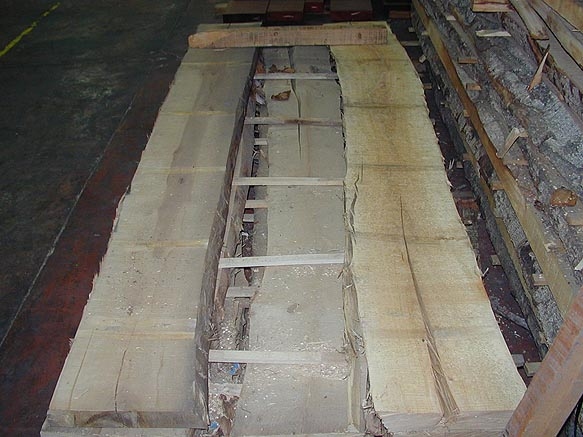 Abedul en tablón - Madera de abedul en tablón ( precio por decímetro cúbico )