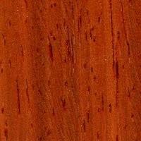 Pliego de chapa de coral ( palo rojo ) - Pliego de chapa de madera de Coral ( Palo rojo ) de 60 x 25 cm. aproximadamente y 0,6 mm. de espesor.
