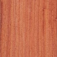 Pliego de chapa de coral ( palo rojo )