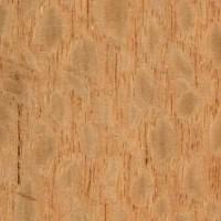 Pliego de chapa de Lourofaya - Pliego de chapa de madera de Lourofaya de 60 x 25 cm. aproximadamente y 0,6 mm. de espesor.