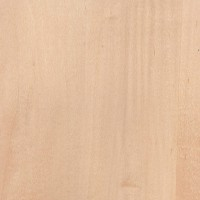 Plancha de madera de maple de 60 x 20 cm venta de for Madera maple