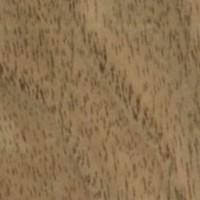 Hoja de chapa de nogal americano venta de madera madera for Precio de chapas de 6 metros
